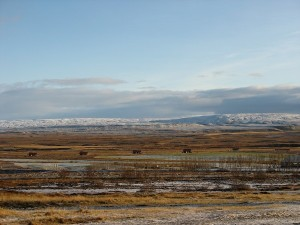 islande 10-11-2007 16-44-24