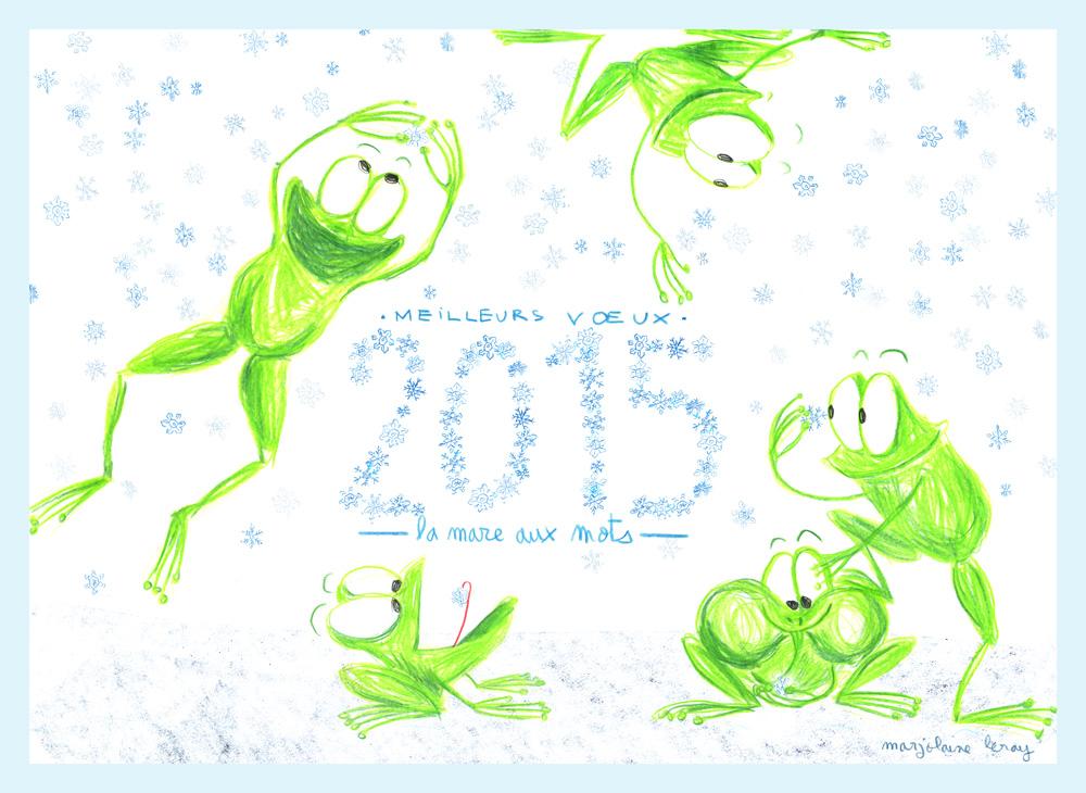 Bonne année 2015 (Marjolaine Leray)